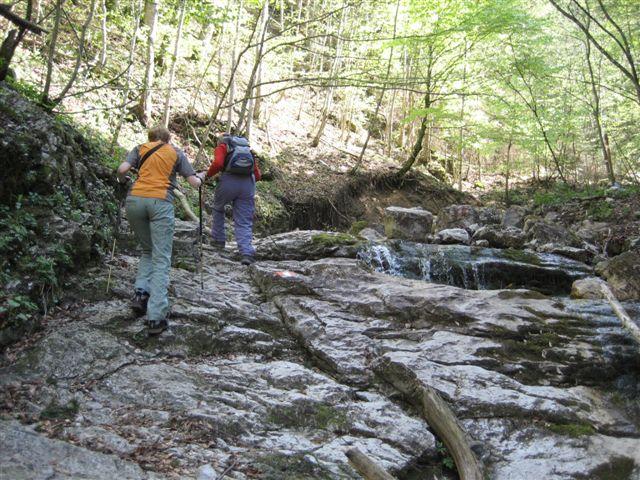 Foto: Jogal / Wander Tour / Von Scharnstein auf den Hochsalm / 22.04.2007 19:52:01