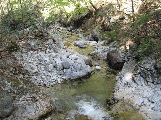 Foto: Jogal / Wander Tour / Von Scharnstein auf den Hochsalm / 22.04.2007 19:52:17