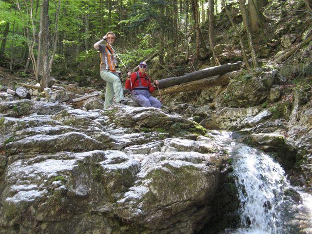 Foto: Jogal / Wander Tour / Von Scharnstein auf den Hochsalm / 22.04.2007 19:52:35