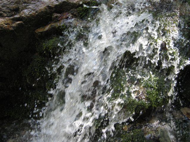 Foto: Jogal / Wander Tour / Von Scharnstein auf den Hochsalm / 22.04.2007 19:52:24