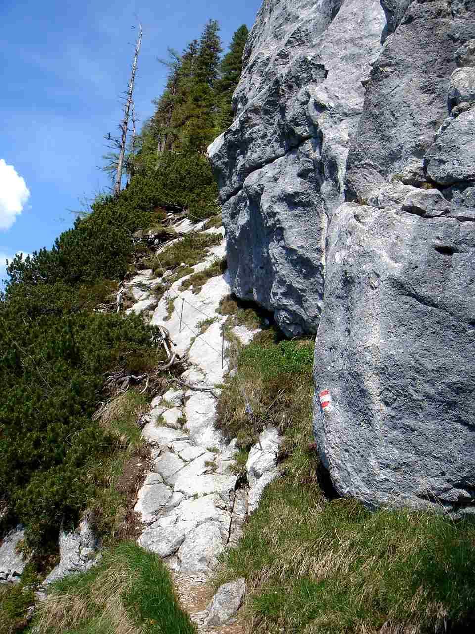 Foto: Manfred Karl / Wander Tour / Dietrichshorn (1542m) /