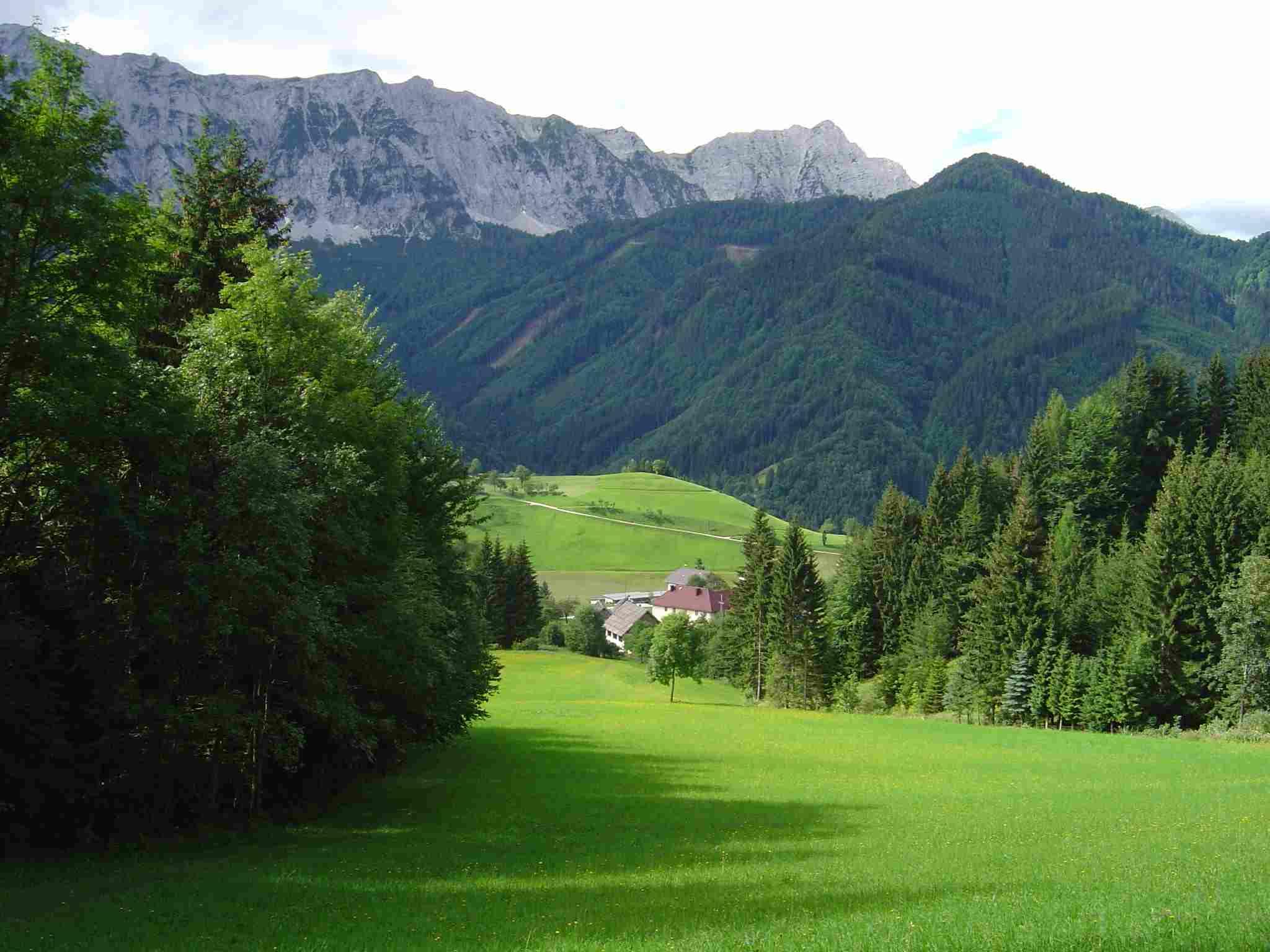 Foto: Manfred Karl / Wander Tour / Freiberg (Setitsche), 1923 m / Etwas oberhalb des Ausgangspunktes Zell Pfarre. / 05.05.2007 18:38:44