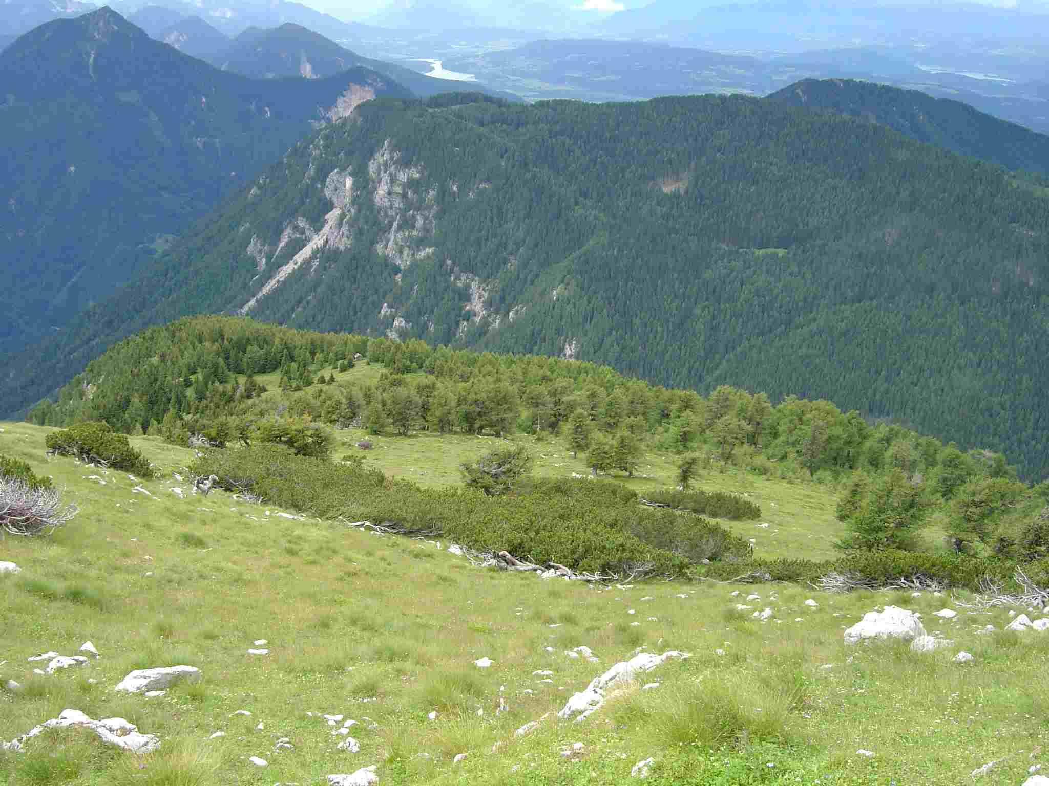 Foto: Manfred Karl / Wander Tour / Freiberg (Setitsche), 1923 m / Über den Gipfelhang schaut man westwärts hinunter zum Jauernik. / 05.05.2007 18:25:18