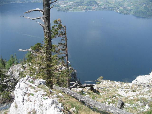 Foto: Alpinfreunde / Wandertour / Über den Naturfreundesteig auf den Traunstein / 29.04.2007 20:00:24