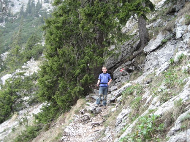 Foto: Alpinfreunde / Wandertour / Über den Naturfreundesteig auf den Traunstein / Abstieg über den Humanen Mairalmsteig / 29.04.2007 20:04:49