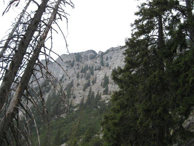 Foto: Alpinfreunde / Wandertour / Über den Naturfreundesteig auf den Traunstein / Abstieg über Mairalm: Blick zurück zum Traunstein / 29.04.2007 20:04:56