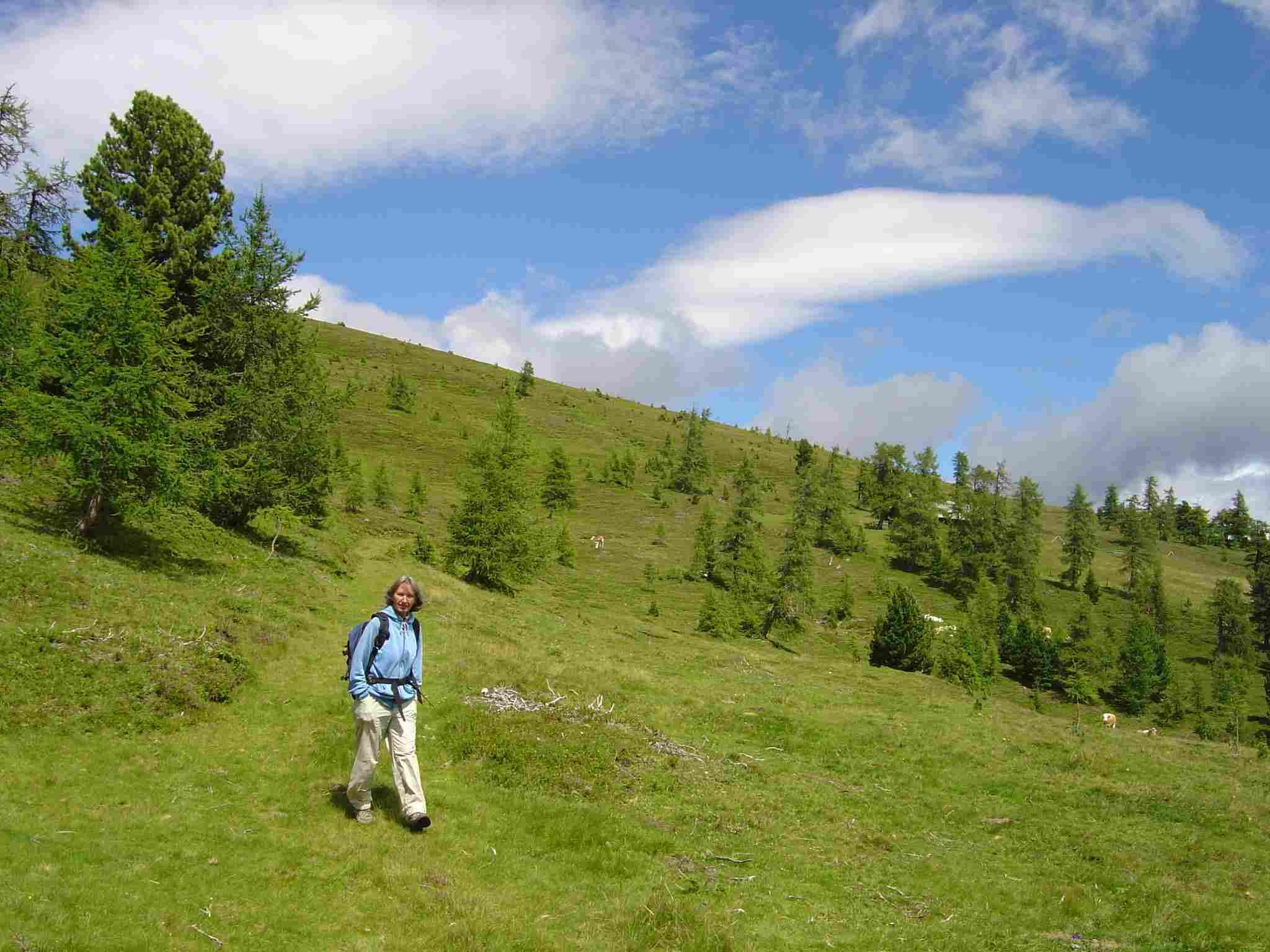 Foto: Manfred Karl / Wander Tour / Von St. Lorenzen auf den Speikkofel / Herrliche Almwiesen in der Nähe der Kirchlhütte. / 03.05.2007 06:27:49