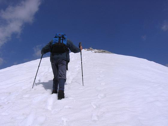 Foto: Andreas Koller / Wandertour / Große Guglspitze - stille Tour im Hochfeindkamm (2638 m) / Die letzten Meter zum Gipfel / 30.04.2007 21:31:24