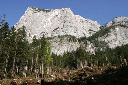 Foto: Lenswork.at / Ch. Streili / Wandertour / Rund um den Altausseer See / Sturmschäden vom Jänner 2007 sind nicht zu übersehen / 03.05.2007 13:53:17