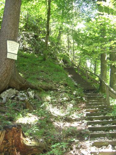 Foto: max1005 / Wander Tour / Auf den Kleinen und Großen Barmstein / Aufstieg zum Kleinen Barmstein / 17.06.2007 12:21:26
