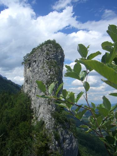 Foto: max1005 / Wander Tour / Auf den Kleinen und Großen Barmstein / Großer Barmstein vom Aufstieg zum Kleinen Barmstein aus betrachtet / 17.06.2007 12:23:49