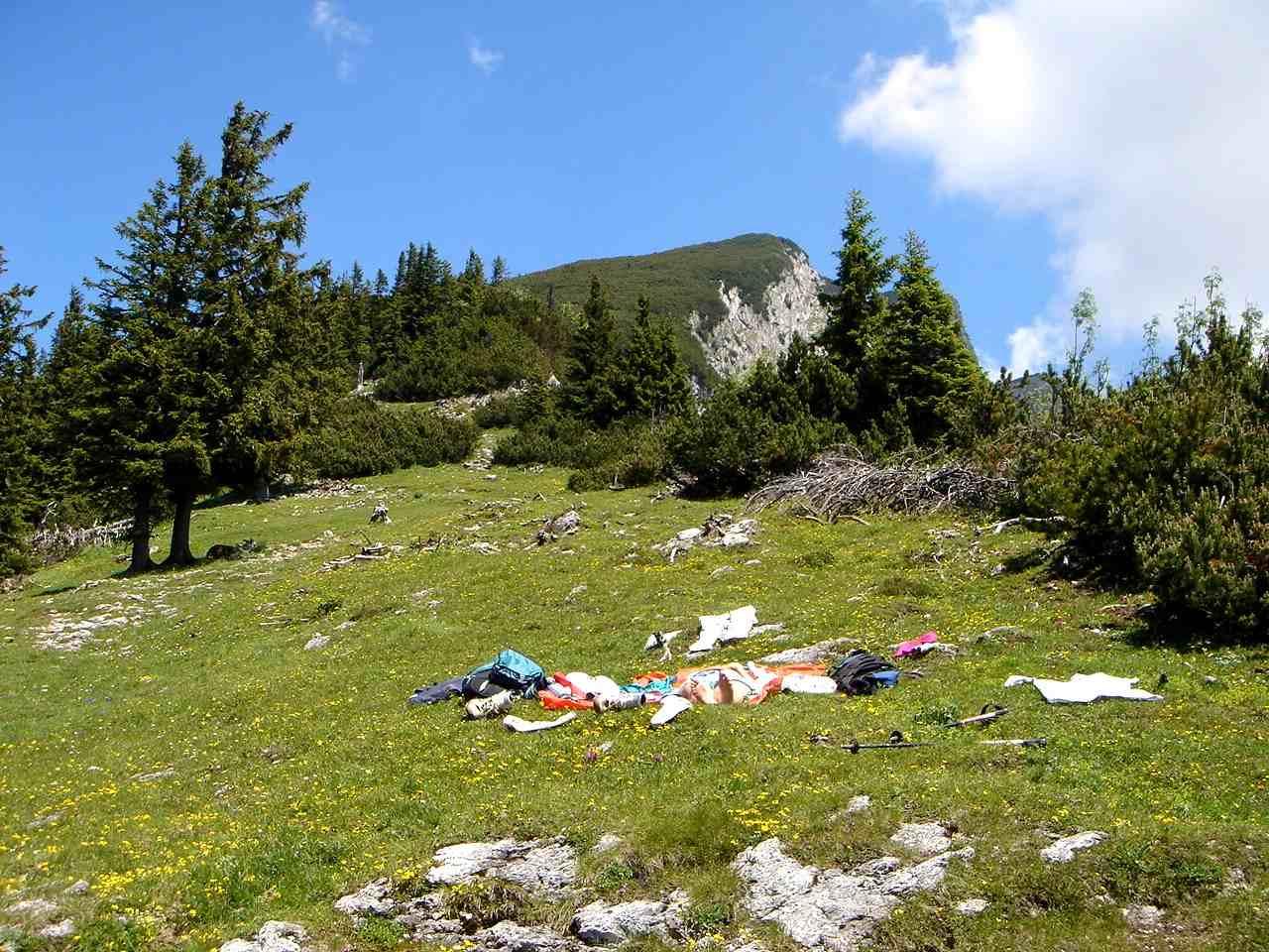 Foto: Manfred Karl / Wander Tour / Von Bischofswiesen auf den Berchtesgadener Hochthron / Liegewiese etwas unterhalb der Wegverzweigung der Anstiege Bischofswiesen und Hintergern. / 17.05.2007 20:48:04