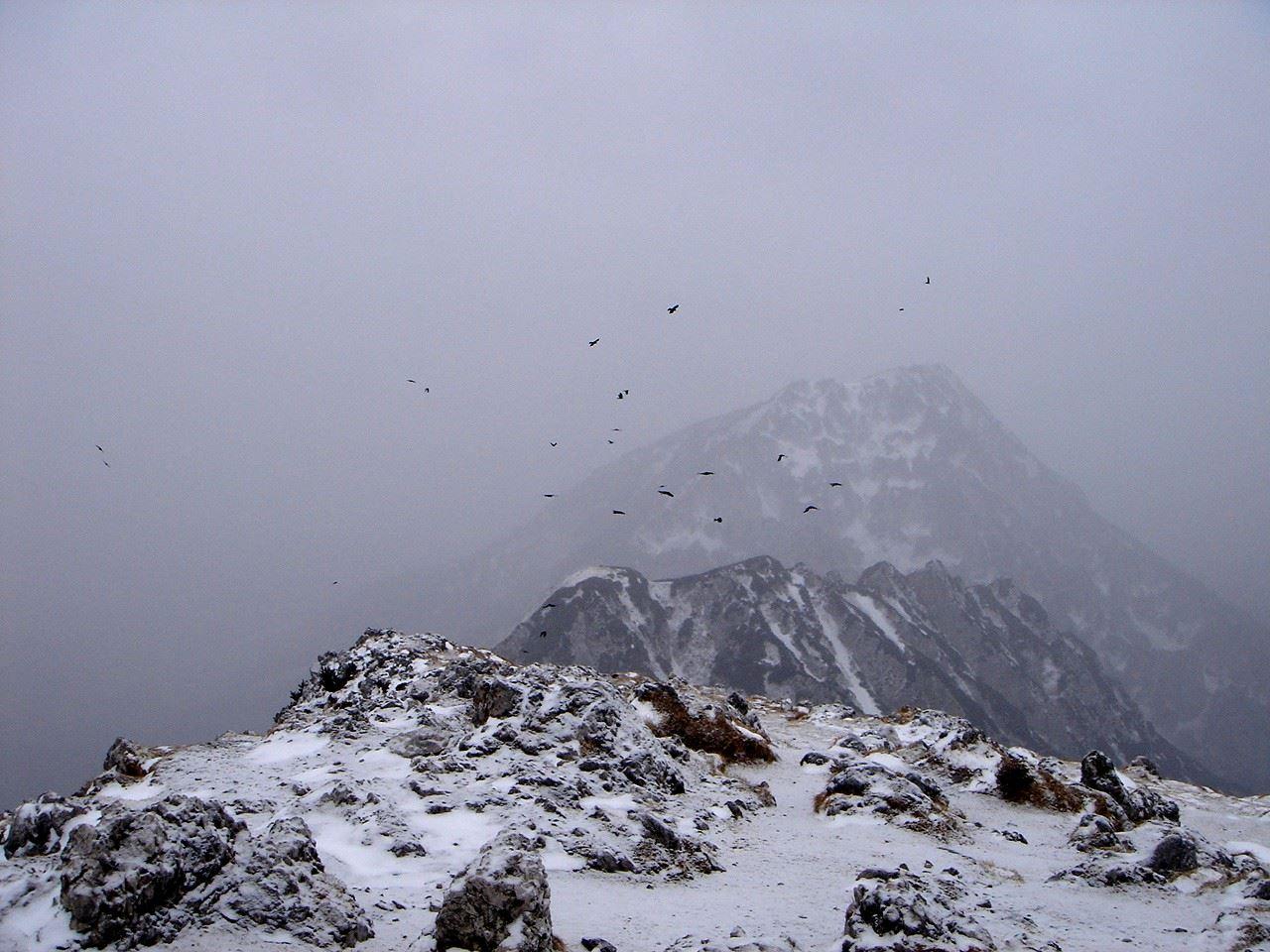 Foto: Manfred Karl / Wander Tour / Von der Padinger Alm auf den Hochstaufen / Düstere Stimmung am Gipfel (Aufnahme am 22.01.07) / 18.05.2007 06:57:47
