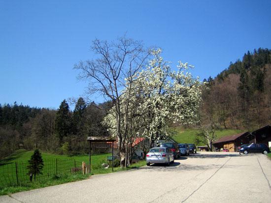 Foto: letsgoactive / Mountainbike Tour / Rund um den Staufen / Beim Listwirt ist der Asphalt zu Ende / 06.05.2007 16:42:11