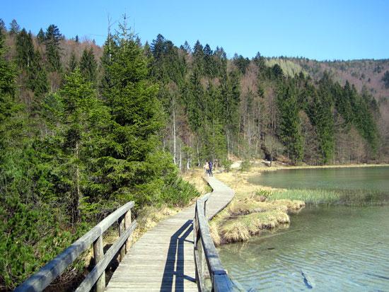 Foto: letsgoactive / Mountainbike Tour / Rund um den Staufen / Entweder rund um den See. Oder quer drüber. / 06.05.2007 16:50:27