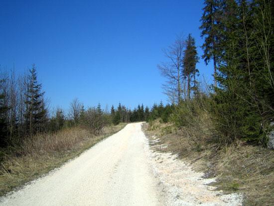 Foto: letsgoactive / Mountainbike Tour / Rund um den Staufen / Der letzte Anstieg in Richtung Steineralm. / 06.05.2007 16:50:55