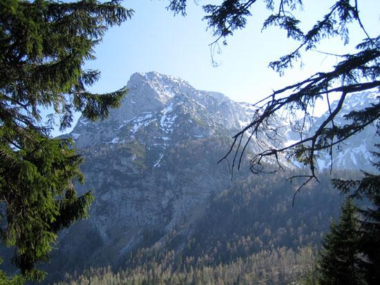 Foto: letsgoactive / Mountainbike Tour / Rund um den Staufen / Herrlicher Ausblick zum Hochstaufen oberhalb der Steineralm. / 06.05.2007 16:53:13