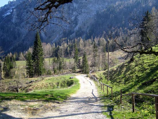 Foto: letsgoactive / Mountainbike Tour / Rund um den Staufen / Nun geht´s nur noch abwärts. / 06.05.2007 16:54:32