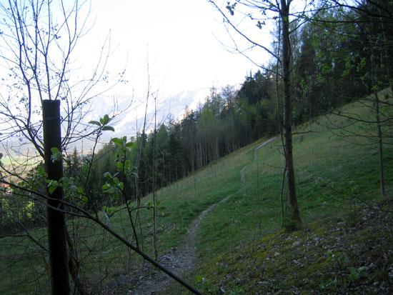 Foto: letsgoactive / Mountainbike Tour / Rund um den Staufen / Nette Singletrailvariante in Richtung Reichenhall. / 06.05.2007 16:54:57