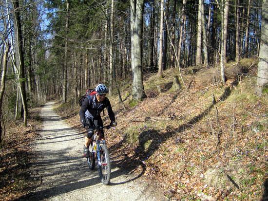 Foto: letsgoactive / Mountainbike Tour / Rund um den Untersberg / Der erste Anstieg im Wald direkt neben der Strasse in Richtung Latschenwirt / 06.05.2007 17:09:28