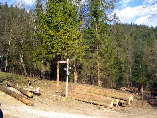 Foto: letsgoactive / Mountainbike Tour / Rund um den Untersberg / Geradeaus weiterfahren! / 06.05.2007 17:19:58