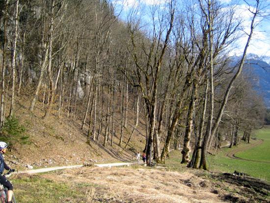 Foto: letsgoactive / Mountainbike Tour / Rund um den Untersberg / 06.05.2007 17:21:27