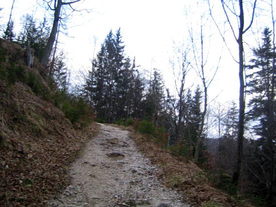 Foto: letsgoactive / Mountainbike Tour / Rund um den Untersberg / Noch gemütlich. Sitz rein! / 06.05.2007 17:22:53