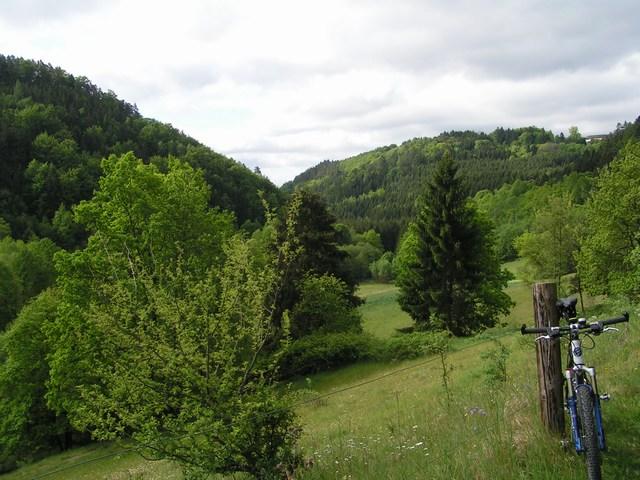 Foto: Jürgen Lindlbauer / Mountainbike Tour / Von Unterweitersdorf nach Ottenschlag im Mühlkreis / Blick Richtung Süden ins kleine Gusental  / 21.05.2007 22:20:30