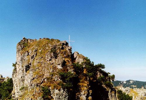 Foto: vince 51 / Wander Tour / Von Unterjoch auf den Zinken (1613m) / 22.05.2007 21:42:30