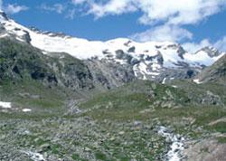 Foto: Tirol Werbung / Wander Tour / Adlerweg Etappe O 14 - Blumenpracht bis zum Eis / 26.07.2007 10:43:16