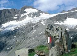 Foto: Tirol Werbung / Wander Tour / Adlerweg Etappe O 15 - Zur letzten Felsbastion / 26.07.2007 10:44:21