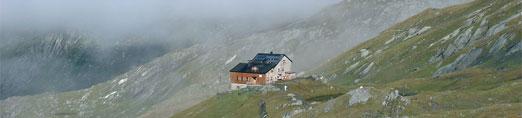 Foto: Tirol Werbung / Wander Tour / Adlerweg Etappe O 16 - Bäche, Almen, Edelweiß / 26.07.2007 10:45:15