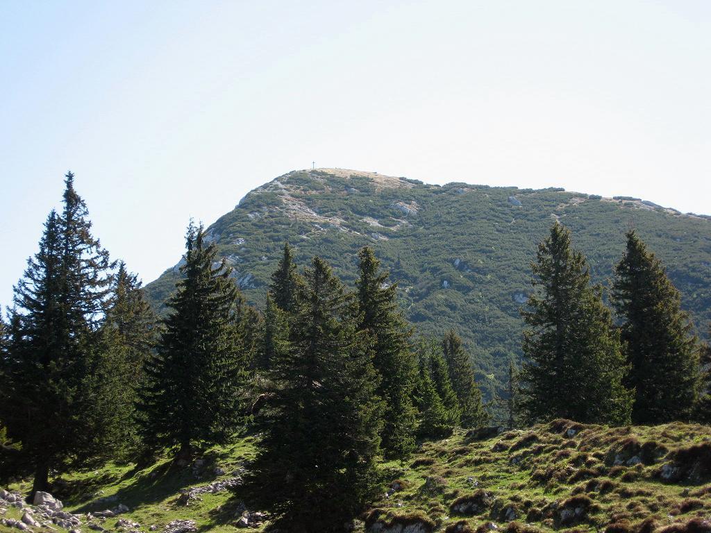 Foto: hangler@utanet.at / Wander Tour / Von Jochberg auf Gamsknogl und Zwiesel / 05.06.2007 20:46:01
