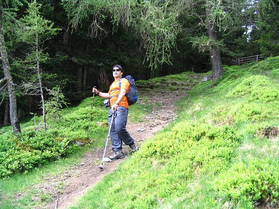 Foto: Andreas Koller / Wander Tour / Gummaberg und Kreuzhöhe (2566 m) / Schöner Waldweg im Aufstieg zur Wildbachhütte / 28.05.2007 10:47:41