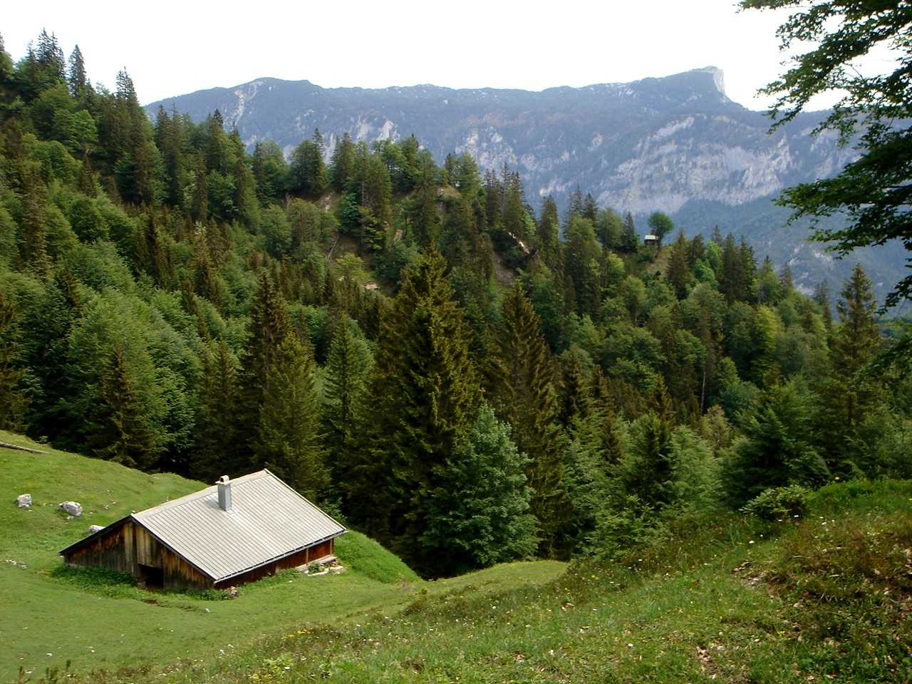 Foto: Manfred Karl / Wander Tour / Törlkopf, 1704 m / Von der Alm hat man bereits einen schönen Blick auf das Westplateau des Untersberges. / 03.06.2007 20:44:23