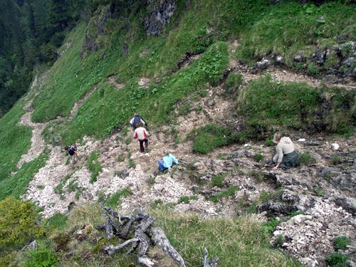 Foto: vince 51 / Wander Tour / Auf den Sorgschrofen (1638m) / 03.06.2007 21:13:30