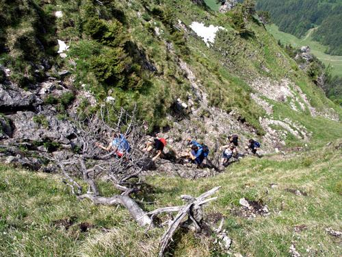 Foto: vince 51 / Wander Tour / Auf den Sorgschrofen (1638m) / 03.06.2007 21:25:26