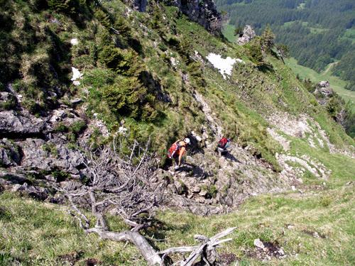 Foto: vince 51 / Wander Tour / Auf den Sorgschrofen (1638m) / Schrofenrinne unterhalb des Gipfels / 03.06.2007 21:27:17