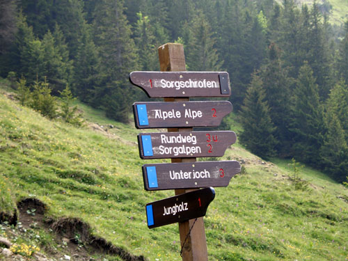 Foto: vince 51 / Wander Tour / Auf den Sorgschrofen (1638m) / 03.06.2007 21:27:42