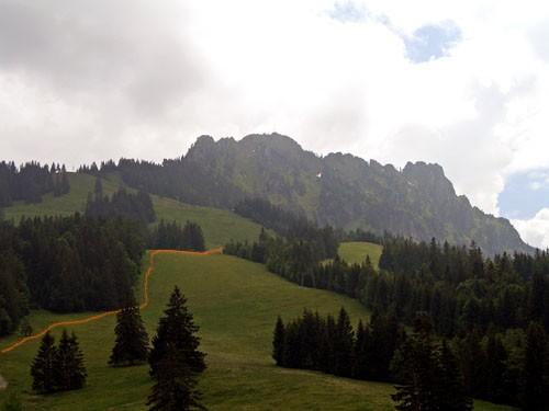 Foto: vince 51 / Wander Tour / Auf den Sorgschrofen (1638m) / Anstiegsweg am Waldrand und über die Schipiste / 03.06.2007 21:28:38