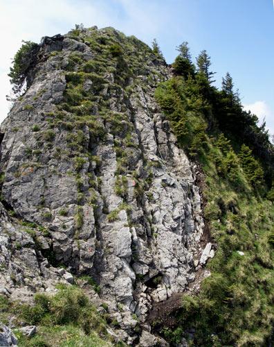 Foto: vince 51 / Wander Tour / Auf den Sorgschrofen (1638m) / Gipfelaufbau mit Stahlseil / 03.06.2007 21:27:04