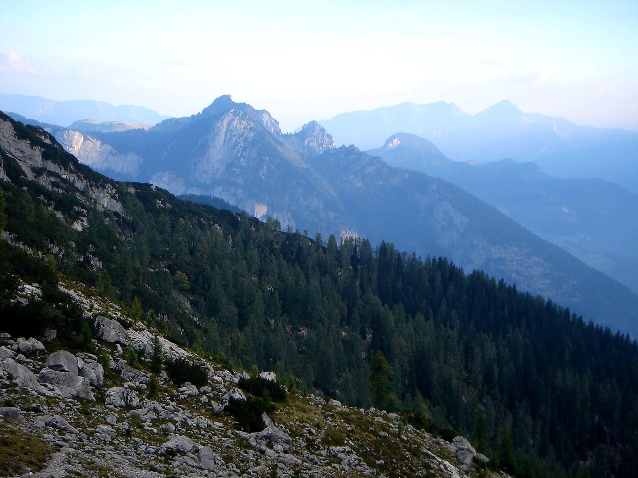 Foto: Manfred Karl / Wander Tour / Großes Ochsenhorn über Schärdinger Steig / Am Schärdinger Steig gegen die Chiemgauer Alpen / 15.06.2007 23:57:03