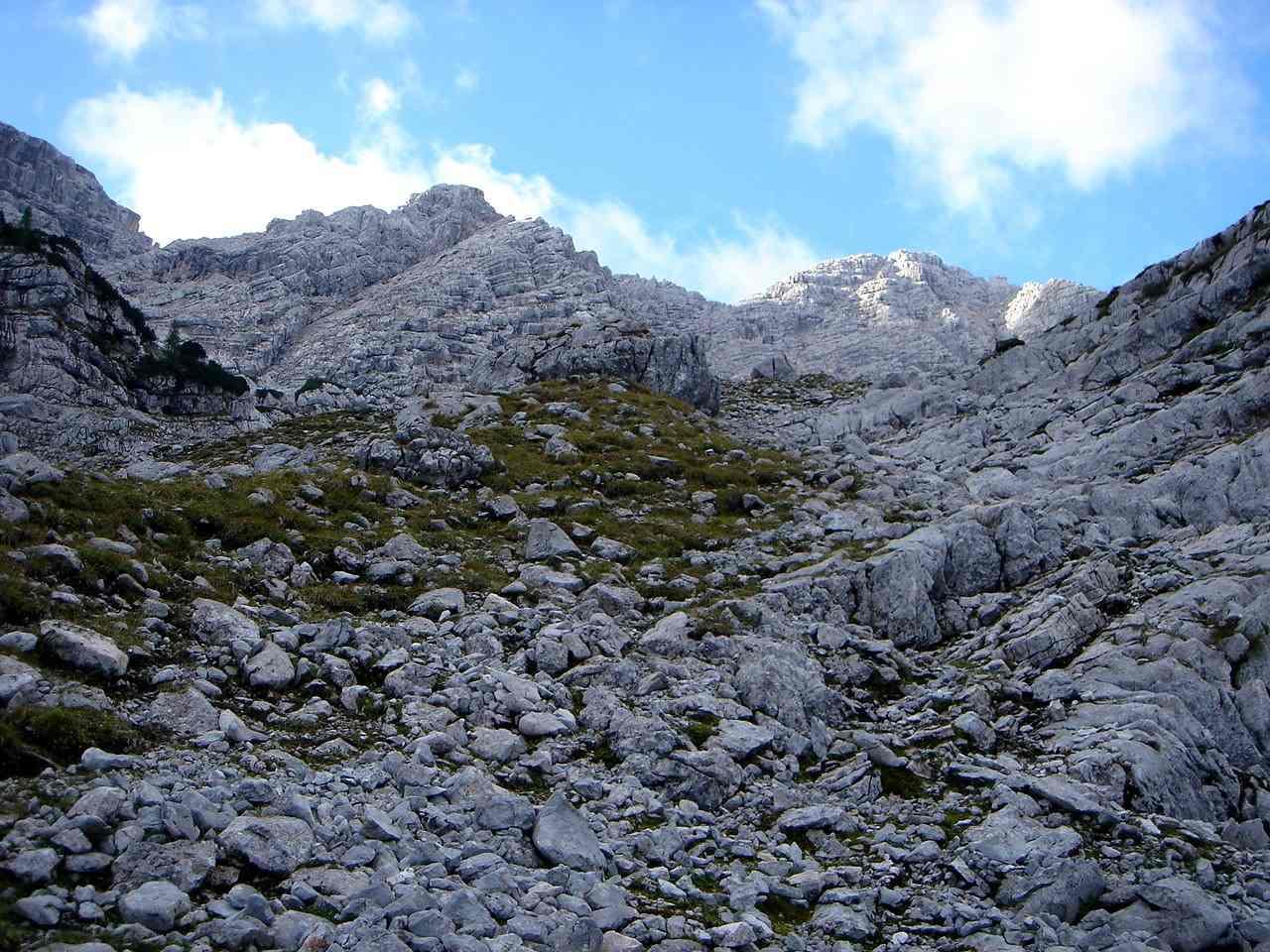 Foto: Manfred Karl / Wander Tour / Großes Ochsenhorn über Schärdinger Steig / Noch ist der Weg lang bis zum Gipfel - hier etwas oberhalb der Waldgrenze. / 15.06.2007 23:59:08