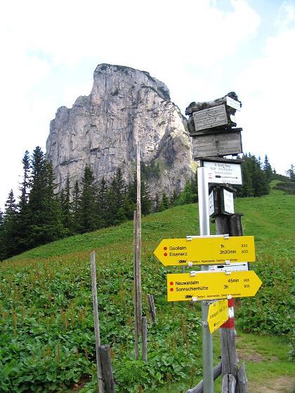 Foto: Andreas Koller / Wander Tour / Über die Gsollhütte auf die TAC-Spitze (2019 m) / Wegweiser am Neuwaldegg Sattel mit Frauenmauer (1827 m) / 07.06.2007 22:56:58