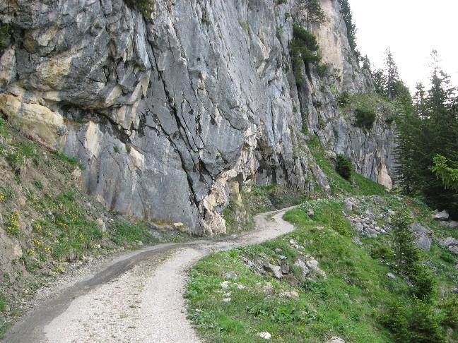 Foto: mucho / Mountainbiketour / Sonnwendbichlalm Bayreutherhütte Münster / Kurz vor der Sonnwendbichlalm / 08.06.2007 18:40:51