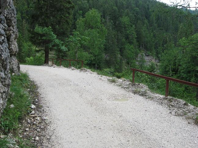 Foto: mucho / Mountainbike Tour / Steinberg Runde01 / Gaismoasbach / 10.06.2007 19:13:53