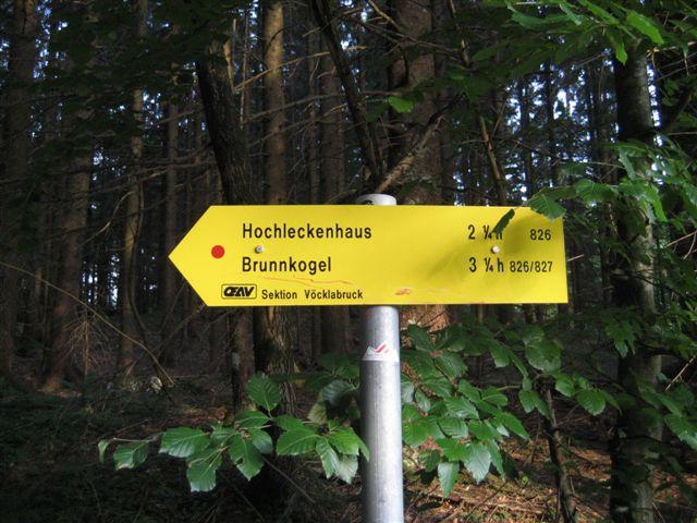 Foto: Alpinfreunde / Wandertour / Hochleckenkogel, Brunnkogel, Hochleckenhaus / 10.06.2007 20:15:00