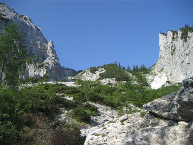 Foto: Alpinfreunde / Wandertour / Hochleckenkogel, Brunnkogel, Hochleckenhaus / Hinauf zum Brunnkogel / 10.06.2007 20:15:29
