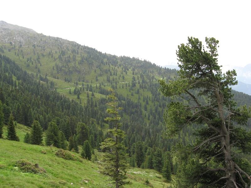 Foto: mucho / Mountainbike Tour / Stumm - Kapaunsalm - Gerlos / Querung zur Kreuzjochhütte / 13.06.2007 19:21:08