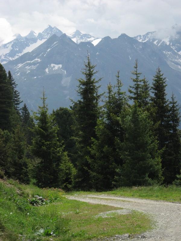 Foto: mucho / Mountainbike Tour / Stumm - Kapaunsalm - Gerlos / Reichenspitzgruppe / 13.06.2007 19:21:32